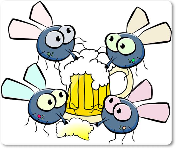 moscas sorbiendo cerveza