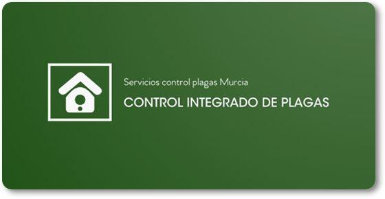 Servicios control plagas Murcia