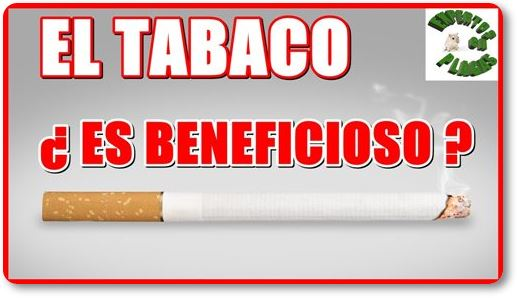 beneficios del tabaco
