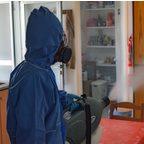 Aplicación de biocidas de Servicios control plagas Murcia